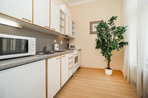 Dapur atau dapur kecil di Hotel Orion
