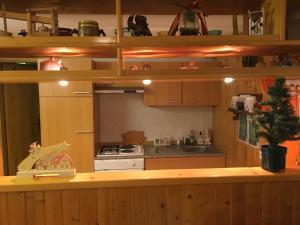 Kuhinja ili čajna kuhinja u objektu Apartma Metka