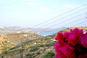 Vista general de una montaña o vista desde el apartamento