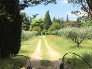 A garden outside Domaine de Casteuse Appartement 2
