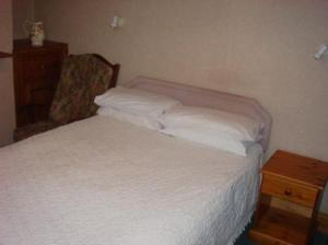 Olive Guest House