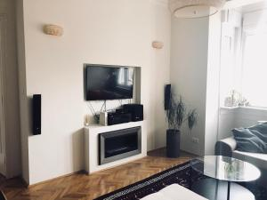A television and/or entertainment center at Modern apartment behind Castle district in Buda