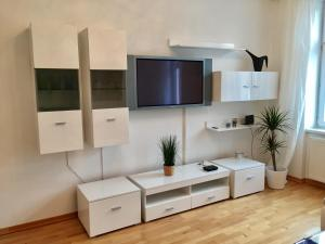 A television and/or entertainment center at Belvedere Apartment