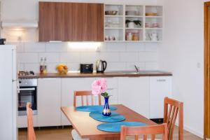 Cuisine ou kitchenette dans l'établissement Apartment Luka
