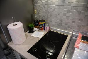 Dapur atau dapur kecil di Srecko Exclusive Apartment