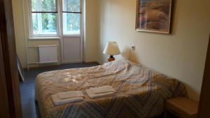 Lova arba lovos apgyvendinimo įstaigoje Gražinos apartamentai