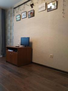 """Телевизор и/или развлекательный центр в Apartments in """"Botanicheskyi Sad"""""""