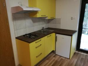 A kitchen or kitchenette at Apartments Jelka