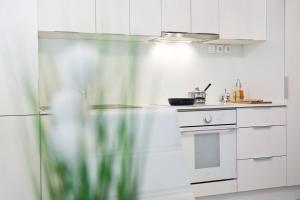 Küche/Küchenzeile in der Unterkunft Apartments Hiša Pod Gradom