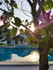 Piscina di Silan Residence Koh Phangan o nelle vicinanze