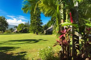 A garden outside Pali Ke Kua #12