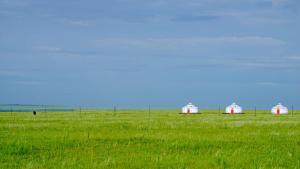 Hulunbuir Grassland Paradise