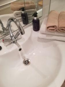 Ein Badezimmer in der Unterkunft Apartment Wasagasse