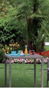 A garden outside Casa Giovanna forte dei marmi