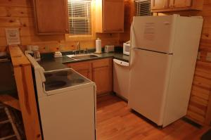 A kitchen or kitchenette at The Cabins at Pine Haven - Beckley
