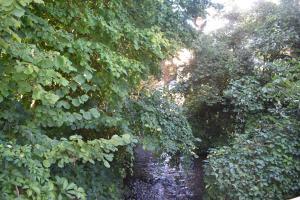 Ogród w obiekcie La petite maison de Vinylous