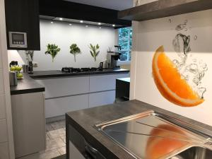 Cuisine ou kitchenette dans l'établissement Holiday Home New Largo