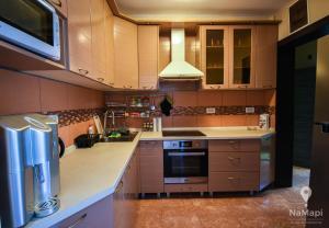A kitchen or kitchenette at Apartman Petkovic