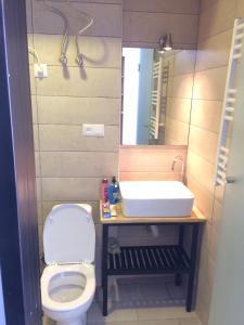 A bathroom at Gudauri Loft Apartment #401