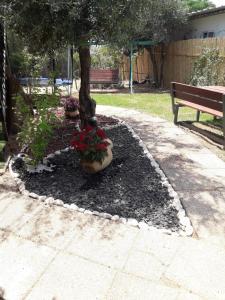 Ein Garten an der Unterkunft The Rashbi studio apartments