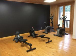 The fitness centre and/or fitness facilities at Résidence Joséphine