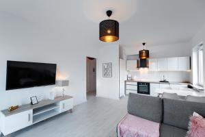 A television and/or entertainment center at Apartament 222 Apartamenty No.1