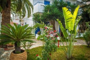 Een tuin van Galini Holidays