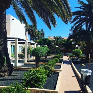 Een tuin van Alisios Playa