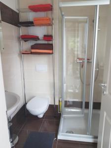 A bathroom at Ferienwohnungen am Krossinsee