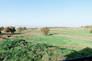 Villa yakınında doğal manzara