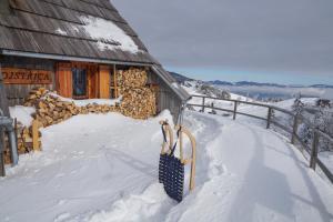 Koča Ojstrica - Velika planina pozimi