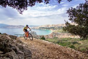 Ποδηλασία στο Valamar Villa Adria ή στη γύρω περιοχή