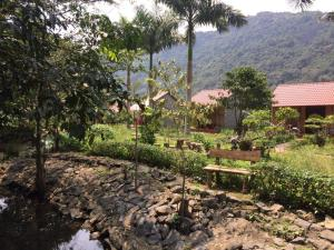 Viet Hai Long Phuong homestay