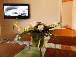 Apartman Virág