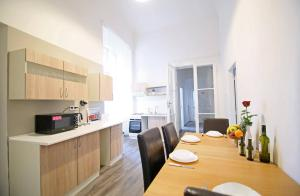 Кухня или мини-кухня в Spacious Apartment Újezd