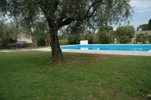 The swimming pool at or near Casa Monte Vigo