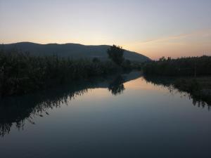 Der Swimmingpool an oder in der Nähe von Mool Gilboa - מול גלבוע