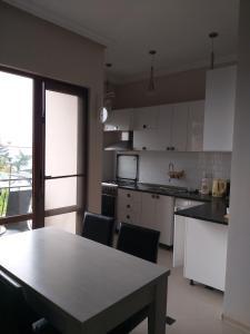 A kitchen or kitchenette at Apartment Gorgiladze 66