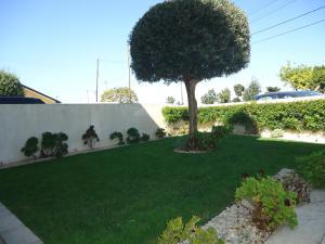 A garden outside Casa no Litoral Aveiro - Casa da Faia