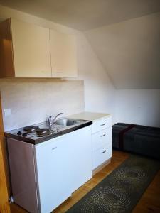 Kuhinja oz. manjša kuhinja v nastanitvi Apartments Bernarda