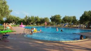 The swimming pool at or near Captain Tom