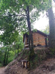 Clădirea în care este situat/ăcasa de vacanță