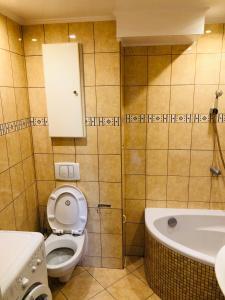 A bathroom at Lovely Apartments Gdańsk