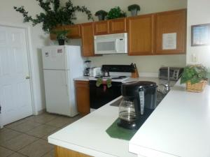 Cuisine ou kitchenette dans l'établissement Fly High and Come to Falcon House in Kissimmee