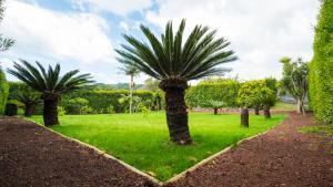 A garden outside Quinta do Torcaz - T1 First Floor