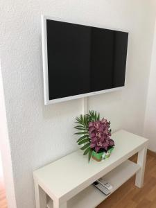 A television and/or entertainment center at Moebilierte 1,5 Zimmerwohnung