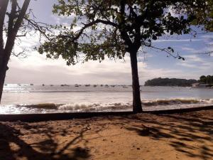 En strand vid eller i närheten av semesterhemmet