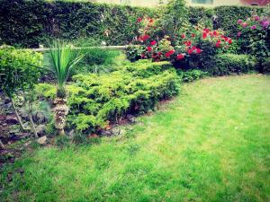 Градина пред Апартаменти Синева Дел Сол