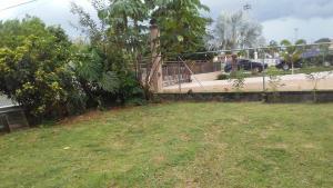 A garden outside Brisas de Borinquen