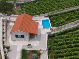 A bird's-eye view of Olive Grove house